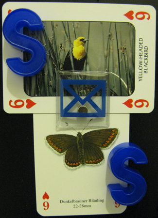 Sixes of hearts featuring a yellow-headed blackbird, a dunkelbrauner bläuling, and some blue letters