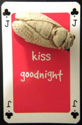 Buggy kiss goodnight